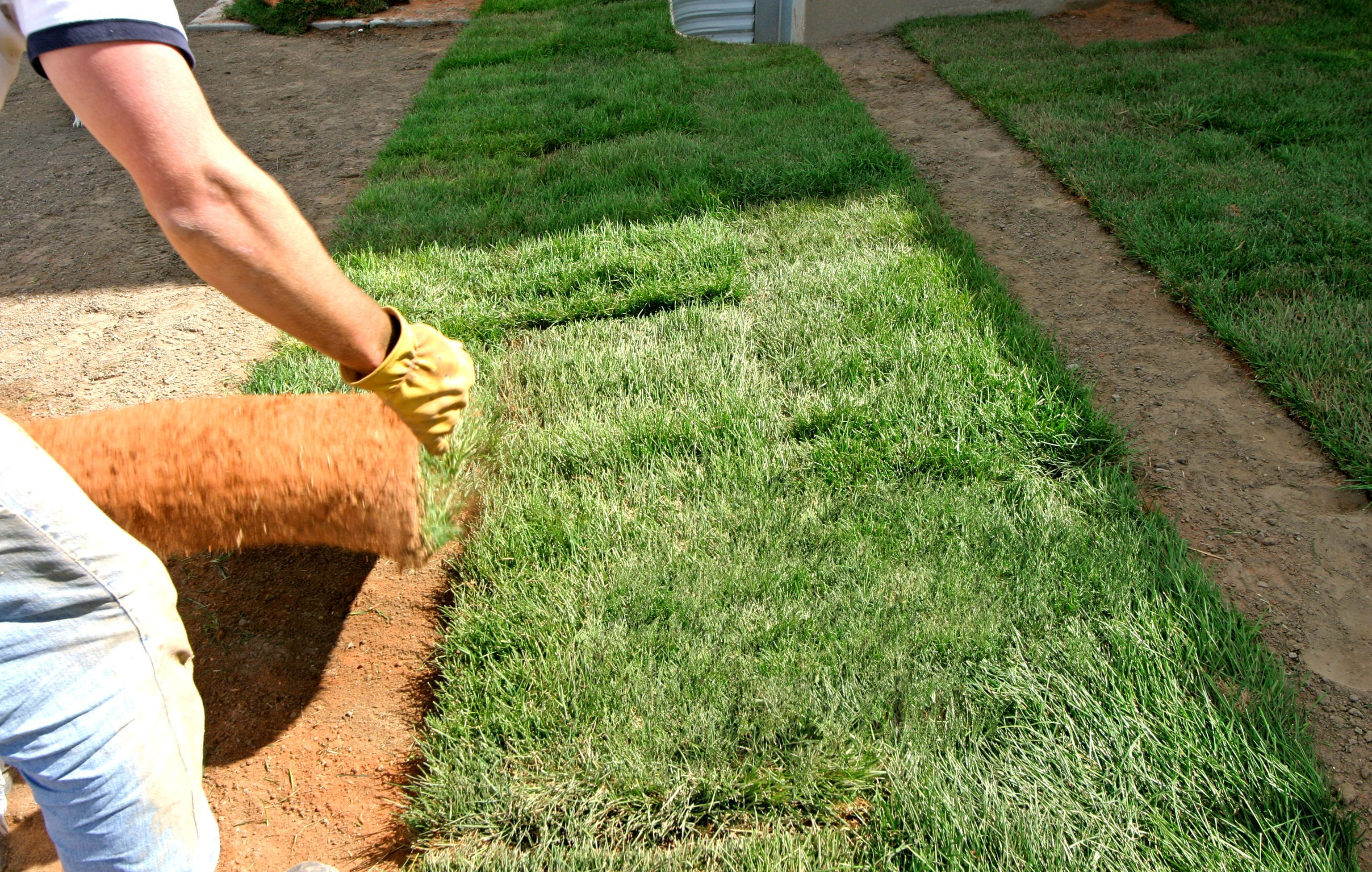 Remove The Old Lawn